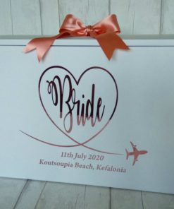 bride wedding dress box for plane